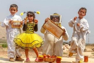תחרות צילומים דבש ודבורים