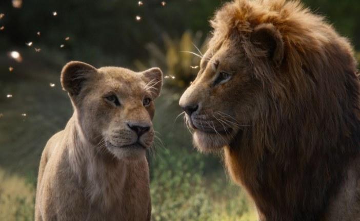 """עיבוד חדש """"למלך האריות"""" – קלאסיקה אהובה בעיבוד סוחף"""
